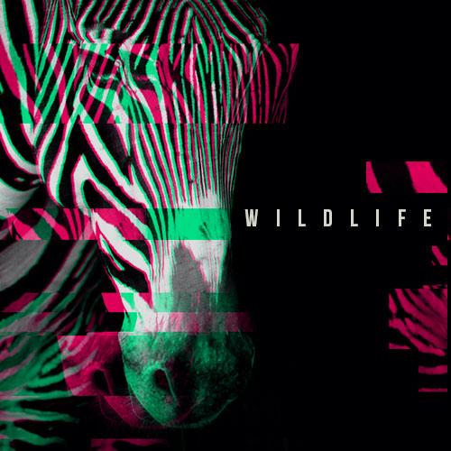 24693_Wildlife1-A
