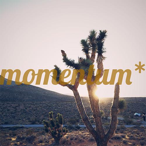 61837_Momentum-A