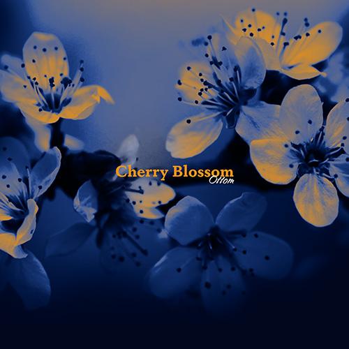 96568_Ottom_-_Cherry_Blossom_-_A